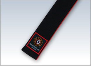 Special-Order Rank Obi (Red) regular