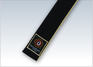 Special-Order Rank Obi (Gold) regular
